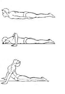 yoga exercise bhujangasana cobra poseyoga fo