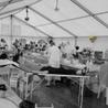 Les greffes,les transplantations ,les transfusions sanguines