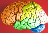 New Computer Chips Mimic the Brain | IdeaFeed | Big Think | Cognitive Science | Scoop.it
