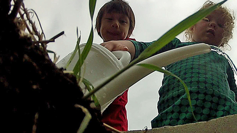 School gardens plant seeds for healthy eating - CBC.ca | Wellington Aquaponics | Scoop.it
