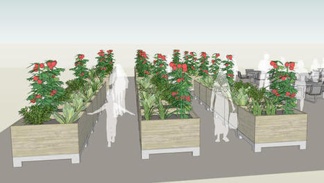 A Roaming Community Garden, To Help Green Vacant Lots | Cultivos Hidropónicos | Scoop.it