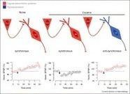 Drug-evoked synaptic plasticity: beyond metaplasticity   Neuroscience_topics   Scoop.it