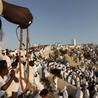 Le quatrième pilier du Hadj : Le jour de Arafat (le 9 de Dhul Hijja) part 1