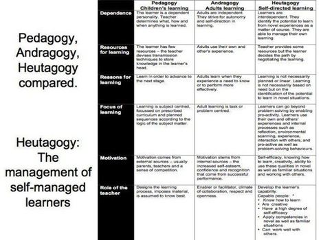 Education 3.0 and the Pedagogy (Andragogy, Heutagogy) of Mobile Learning   Pedagogy in New Learning Environments   Scoop.it