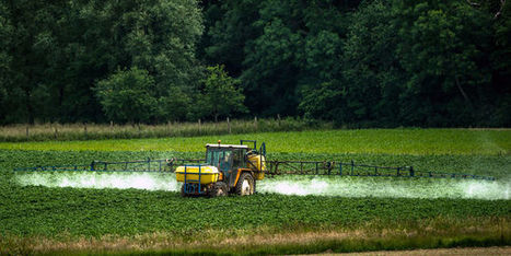Pesticides : l'échec accablant de la « ferme France » | ECONOMIES LOCALES VIVANTES | Scoop.it