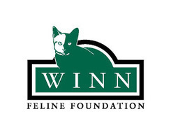 Cat Health News from the Winn Feline Foundation: Developing new therapies for feline mammary cancer | Feline Health and News - manhattancats.com | Scoop.it