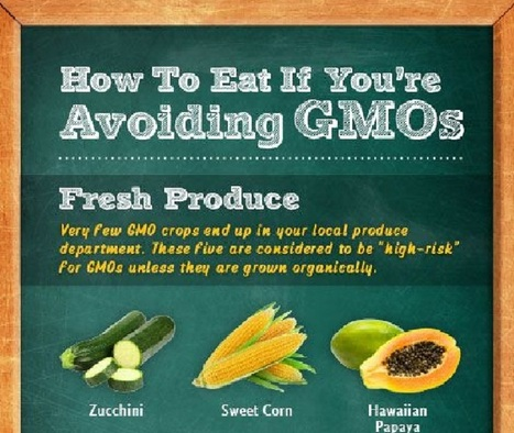 Excellent Ways to Avoid GMOs | The Butter | Scoop.it