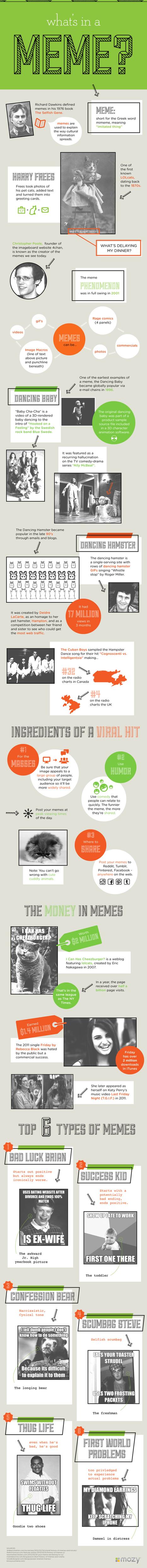 What's in a Meme? - an Infographic | Di tutto un pò... | Scoop.it