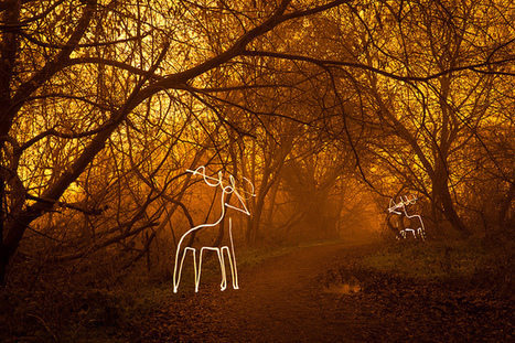 25 Wonderful Christmas Light Painting Images | For the love of Photography | Scoop.it