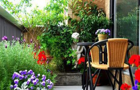 High fliers: Alan Titchmarsh's tips on growing plants on your balcony | Landscape Design DIY, Tips, and Best Practices | Scoop.it