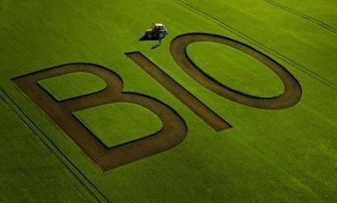 Tempête à l'INRA autour d'un rapport sur l'agriculture biologique | Code Planète | Scoop.it