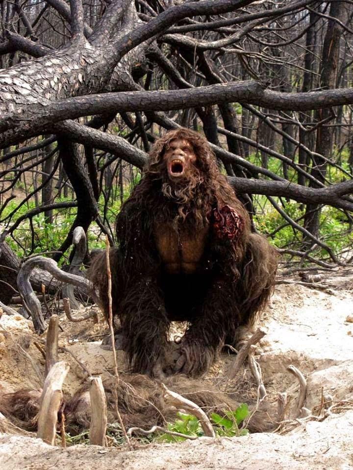 Bear vs. Bigfoot (vs. Werewolf?) | The Proper R...