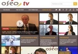Oséo a sa Oséo TV, donnant des conseils aux PME pour se développer | zebrain | Scoop.it