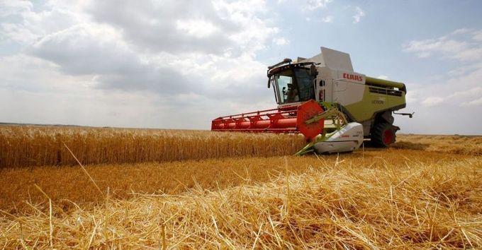 Agriculture française: un trésor national en danger – Economie