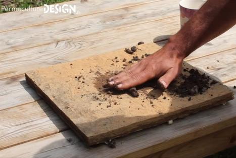 Comment tester simplement votre sol avant un projet de Permaculture? | SPATEN   Test Bêche | Scoop.it