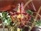 Abdelkarim Rahal Essoulami Ambassadeur de l'art de recevoir marocain dans le monde, aujourdhui.ma | Traiteur Marocain Rahal traiteur oriental de préstige pour mariage. | Actualité marocaine | Scoop.it