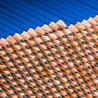 Mind Your Business!