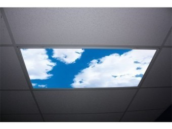 Usa Sky Panels Fluorescent Light Diffuser U