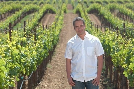 Anderson Valley can be Burgundy of California, says producer | Mendocino County Living | Scoop.it