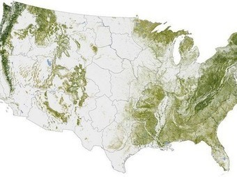 "NASA's Maps of US Trees Will Be a ""Before"" Picture for Deforestation 