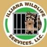 IllianaWildLifeServices