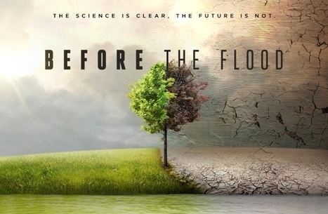 Before the Flood: El documental con Leonardo DiCaprio que explotó en YouTube | Memorias de Orfeo | Scoop.it