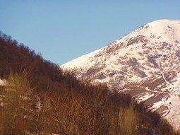 CNF Supports Armenia Forests   Saving the Wild: Nature Conservation in the Caucasus   Scoop.it