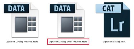 Qu'est ce que les aperçus dynamiques de Lightroom ? | Chroniques libelluliennes | Scoop.it