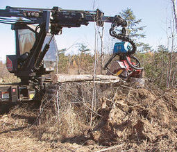 Northern Minnesota loggers: 'Current weather is killing us'   Timberland Investment   Scoop.it