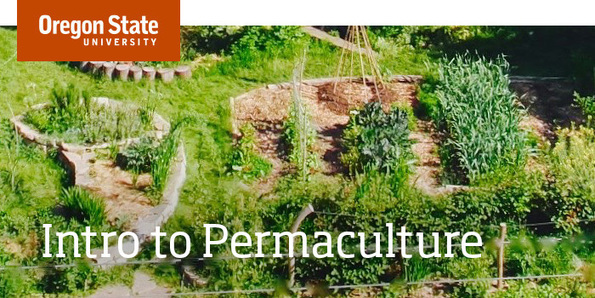 Intro to Permaculture - Free Course