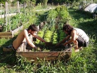 À la fac de Bordeaux, les étudiants choisissent l'option jardin | Développement durable en France | Scoop.it