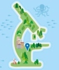 Global mobility: Science mapped out | FuturICT Journal Publications | Scoop.it