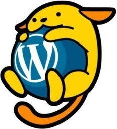 WordPress Beta Tester   Barkinet   Scoop.it