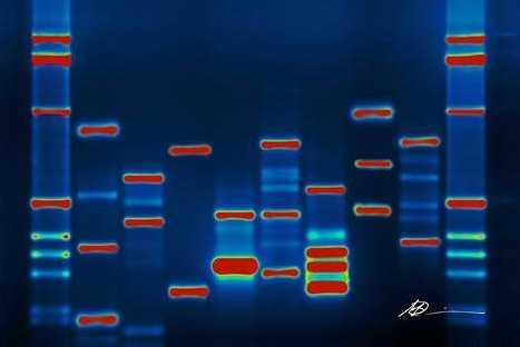 Why you'll likely have your DNA sequenced in 5 years | Entrepreneurship, Innovation | Scoop.it