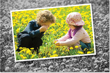 Create a Photo Within A Photo Effect With Photoshop   Photoshop   Scoop.it