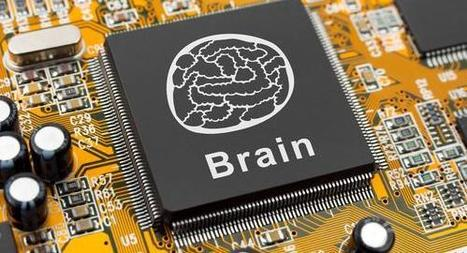 Glitches in the Human Brain Also Appear in Computers   prediction   Scoop.it