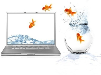 6 Tips for the Successful Online Teacher| The Committed Sardine | 21st C Learning | Scoop.it