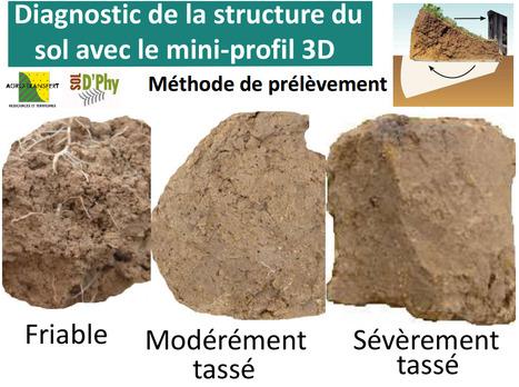 Posters du projet Sol-D'Phy en Picardie : le mini-profil 3D | SPATEN   Test Bêche | Scoop.it