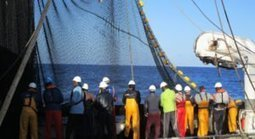 OPAGAC becomes first Spanish tuna fleet to join UN's Global Compact