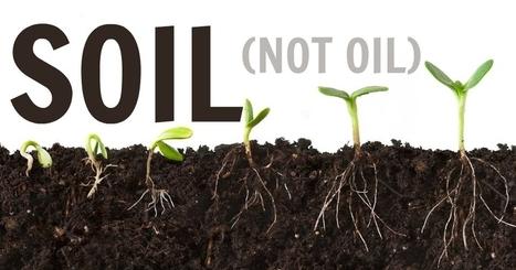 Soil as Our Salvation   Zero Footprint   Scoop.it
