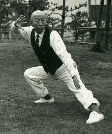 Tai Chi Ch'uan – The Lost Yang Style | Rubbo Art of Energy Weblog | The Tai Chi Journal | Scoop.it