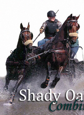 Shady Oaks Combined Driving Events | Carriage Driving Radio Show | Scoop.it