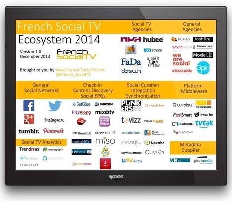 [Infographie] Ecosystème de la SocialTV en France pour 2014 - French SocialTV | Révolution numérique & paysage audiovisuel | Scoop.it