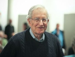 Chomsky: How America's Great University System Is Being Destroyed | A is for Adjunct | Scoop.it