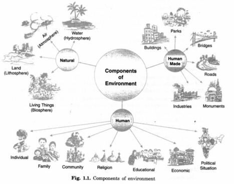 NCERT Solutions for Class 7 Social Science Geog