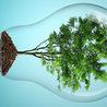Environment (articles en anglais et en français)