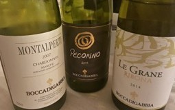Le Marche Wines: Boccadigabbia, A Winery in the Wake of Napoleon | Wines and People | Scoop.it