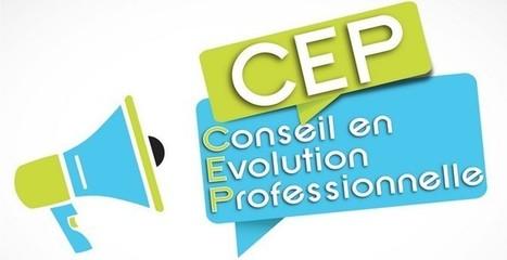 Le guide Repères pour la mise en oeuvre du CEP : bonnes pratiques et points de vigilance   EIVP - Formation continue et Mastères Spécialisés   Scoop.it