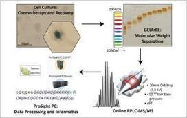Tearing the Top Off 'Top-Down' Proteomics   Mass Spectrometry Geekery   Scoop.it