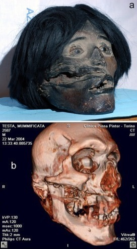 PLOS ONE: A Pre-Hispanic Head | Archaeology Articles and Books | Scoop.it